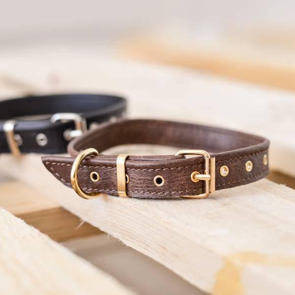 Collier et laisse en cuir fait main pour chien de taille petite et moyenne  marron